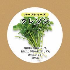 MotoM クレソン 水耕栽培種子セット MAS07 タネ・液体肥料・スポンジ  led栽培器灯菜用