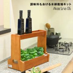 MotoM(モトム)灯菜 Akarina06 ブラウン 水耕栽培キット オリンピア照明