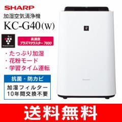 加湿空気清浄機 高濃度プラズマクラスター搭載(花粉症対策・PM2.5対策・除菌・脱臭・空気浄化) KC-G40-W