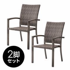 2脚セット チェア ダイニングチェア ガーデンチェア 肘付き ラタン調 [set-91261] 椅子 ガーデンファニチャー イス プラスチック スタッ