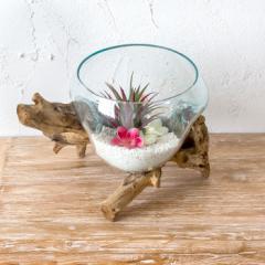 ガラス鉢 流木 プランターオブジェ ガラスボウル オブジェ テラリウム 観葉植物 プランター ガラス容器 西海岸 男前 置物 Lサイズ
