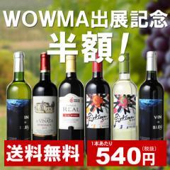【送料無料】ワインセット 家飲み ワイン 6本 セット ボルドー入 赤ワイン 白ワイン デイリーワイン 飲み比べ 第40弾