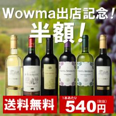 【送料無料】ワインセット 家飲み ワイン 6本 セット ボルドー入 赤ワイン 白ワイン デイリーワイン 飲み比べ 第45弾