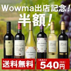 【半額クーポン対象】【送料無料】ワインセット 家飲み ワイン 6本 セット ボルドー入 赤ワイン 白ワイン デイリーワイン 飲み比べ 第50