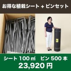 送料無料 お得な植栽シート(100m2)+ピンのセット(500本)セット 防草シート アンカーピン