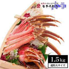送料無料 カニのキタウロコ カット済み本ずわいかにしゃぶ 1.5kg かに カニ 蟹 ズワイガニ ずわい蟹 足 取り寄せ お歳暮 ギフト