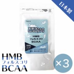 HMB フォルスコリ BCAA タブレット 120粒入×3袋 サプリメント アミノ酸 プロテイン  サイズ 9mm 週末限定3袋セット 錠剤 国産 貯筋
