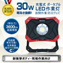 GOODGOODS 頑丈 コンパクト 投光器 led 充電式 30W 3600lm ledライト 充電式 ライトアップ バーベキュー BBQ 夜間照明 夜釣り YC-N8X