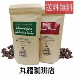 【公式・丸福珈琲店】 送料無料!メール便 選べる2種のコーヒー豆お試しセット コーヒー コーヒー豆 珈琲 豆 選べる