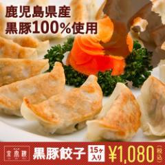 京鼎樓(ジンディンロウ)【黒豚焼き餃子 15個入り】/個性派餃子/豚