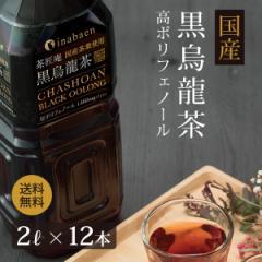 黒烏龍茶 茶匠庵 国産黒烏龍茶 2L×12本 送料無料 2リットル 高ポリフェノール カテキン 黒ウーロン茶 ペットボトル