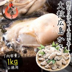 カキ 牡蠣 かき 剥き身 1kg(解凍後850g/大粒2L約26〜35粒)広島県産