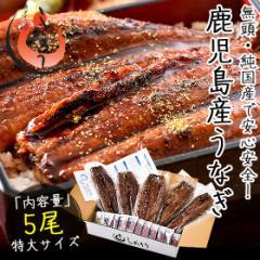 うなぎ 蒲焼き 無頭 鹿児島県産 国産 特大サイズ 約200g×5尾 ウナギ 鰻 f_ninki f_unagi