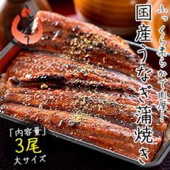 うなぎ 蒲焼き 国産 大サイズ 170g×3尾 ウナギ 鰻