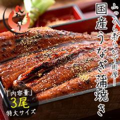 うなぎ 蒲焼き 国産 特大サイズ 200g×3尾 ウナギ 鰻