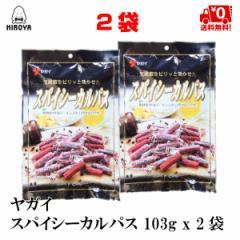 送料無料 サラミ ドライソーセージ おやつ おつまみ 珍味 駄菓子珍味 スパイシーカルパス 103g x 2袋
