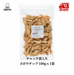 チップス ごぼう チップス 送料無料 ゴボウチップ 100g x 1袋 チャック袋入り 牛蒡 ドライ野菜 食物繊維