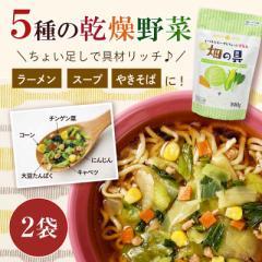 スープ・ラーメンの具 お試し2袋セット 乾燥野菜畑の具190gx2袋(キャベツ チンゲン菜 コーン にんじん 大豆)  ひかり味噌 スープの具 や