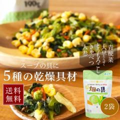 スープ・ラーメンの具 お試し2袋セット 乾燥野菜畑の具190gx2袋(キャベツ チンゲン菜 コーン にんじん 大豆) 送料無料 ひかり味噌 スープ