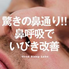 【メール便送料無料】いびき防止グッズ スージー 鼻 クリップ ノーズクリップ いびき防止 鼻づまり予防 矯正