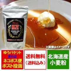 送料無料 ホットケーキミックス 小麦粉 北海道産 きたほなみ 使用 ホットケーキ ミックス 500 g×1袋 価格 933円 ホットケーキミックス粉