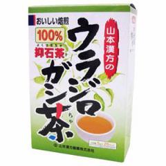 山本漢方製薬 ウラジロガシ茶100%20H ウラジロガシ100%