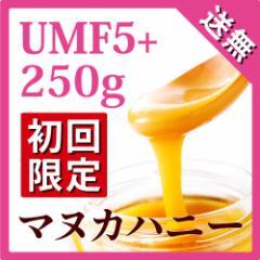 マヌカハニー UMF 5+ 250g (MGO 83〜262相当)【おひとり様一回限り最大4ビンまで】