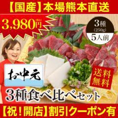 【祝開店!割引クーポン有】 馬刺し お中元 熊本 国産 送料無料 3種食べ比べセット 約5人前 250g