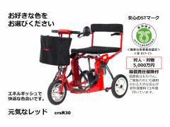 自由に動ける喜びをお届けします。日本初!全自動折りたたみ 電動カート DiBlasi R30 <レッド>