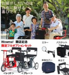 フルオプション限定品 <グレー>自由に動ける喜びをお届けします。日本初!全自動折りたたみ 電動カート DiBlasi R30