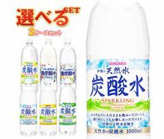 【送料無料】サンガリア 伊賀の天然水 炭酸水 選べる2ケースセット 1Lペットボトル×24(12×2)本入