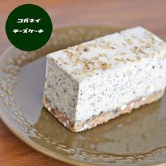 香ばしほうじ茶のレアチーズケーキ [単品]