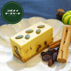 ケーキ チーズケーキ お取り寄せ お菓子 かぼちゃレーズンレアチーズケーキ  [単品]