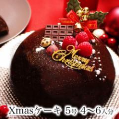 クリスマスケーキ 予約 誕生日ケーキ バースデーケーキ 本州 送料無料 子供 女性 / 生 チョコ トルテ 5号 Ver.2 4〜6人前