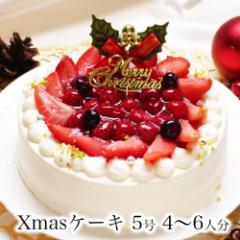 クリスマスケーキ 予約 誕生日ケーキ バースデーケーキ 本州 送料無料 子供 女性 / プレミアム ホワイトベリー 5号 3〜4人前