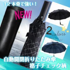自動開閉 折りたたみ傘 強い 折れにくい 超撥水 グラスファイバー使用 12本骨 ワンタッチ ケース付き