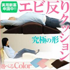 【送料無料】 寝返り防止クッション 体位変換 テレビ枕 背中枕 ウレタン 三角クッション アー