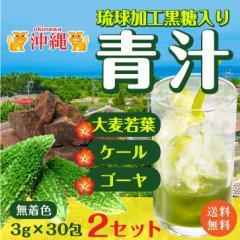 訳あり 沖縄 琉球 黒糖 青汁 3gx30px2セット 送料無料 ポスト投函便 ポイント 消化