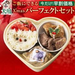 【早割】犬用 クリスマスケーキ(犬 クリスマスケーキ・おやつ・手作りご飯 4点セット)無添加【冷凍】