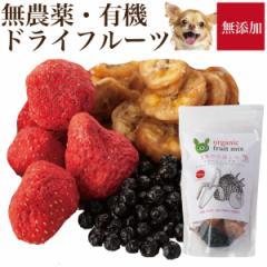 犬 果物 おやつ(食後の楽しみ フルーツ ミックス無添加 苺・バナナ・ブルーベリー【通常便 送料無料】