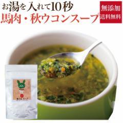 犬・ペット用( 馬うま スープ)無添加 粉末 手作りご飯【メール便 送料無料】