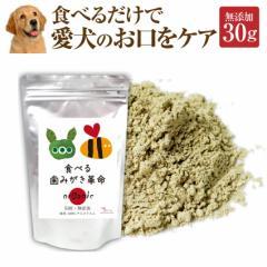 犬 無添加 サプリ(食べる歯磨き革命 30g) デンタル 歯垢に【メール便 送料無料】
