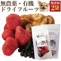 犬 果物 おやつ(食後の楽しみ フルーツ ミックス 2袋)無添加 苺・バナナ・ブルーベリー【通常便】