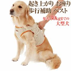 犬 歩行補助 介護用品(ベスト・ハーネス 3L)高齢犬・シニア犬・老犬の為の胴輪