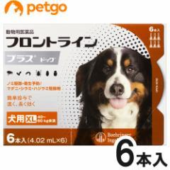 【200円OFFクーポン】犬用フロントラインプラスドッグXL 40kg〜60kg 6本(6ピペット)(動物用医薬品)