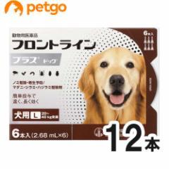 【200円OFFクーポン】【2箱セット】犬用フロントラインプラスドッグL 20kg〜40kg 6本(6ピペット)(動物用医薬品)