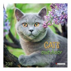 カレンダー 2019年 アウトドアキャッツ CATS OUTDOOR 壁掛け カレンダー TUSHITA インテリア平成31年 暦 通販  予約