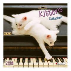 カレンダー 2019年 仔猫 KITTENS 壁掛け カレンダー TUSHITA インテリア平成31年 暦 通販  予約