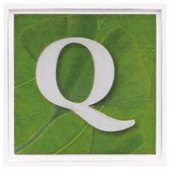 取寄品 Q アルファベット インテリア パネル アートフレーム グリーン インテリア グッズ