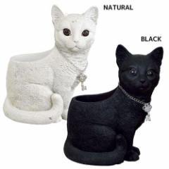 取寄品 鉢植え 進物 ネコ プランター お座り BLACK NATURAL ギフト グッズ